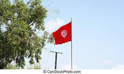Flag of the Republic of Tunisia