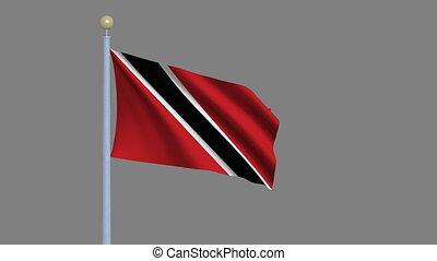 Flag of Trinidad and Tobago waving in the wind with flagpole...