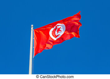 Flag of Tunisia waving in the wind against the sky