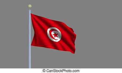 Flag of Tunisia waving in the wind with flagpole -with alpha...