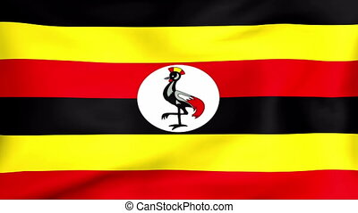 Developing the flag of Uganda