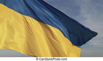 Flag of Ukraine in the wind. Kyiv.