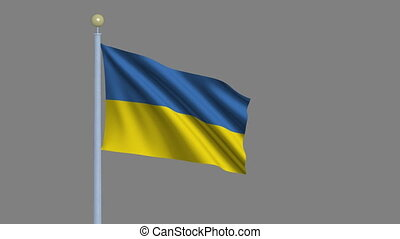 Flag of Ukraine waving in the wind