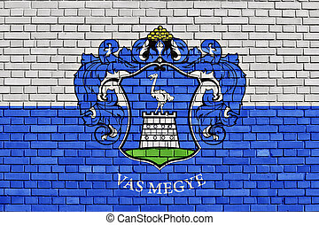 flag of Vas County painted on brick wall