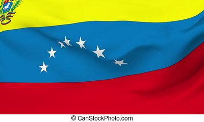 Flag of Venezuela - Flag of the Venezuela waving in the...