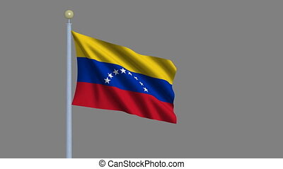 Flag of Venezuela waving in the wind with flagpole - very...