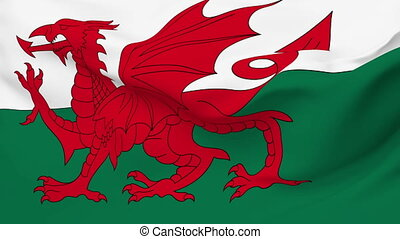 Flag of Wales - Flag of the Wales waving in the wind....