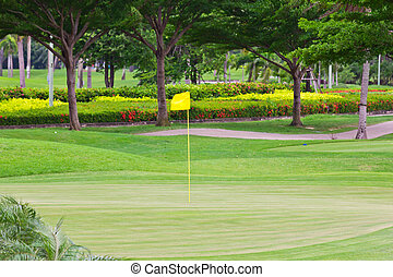 Flag on green in golf course