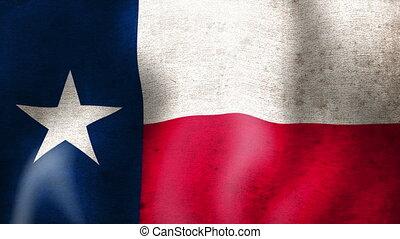 flag., texas