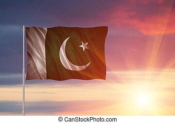 Flag of the Pakistan