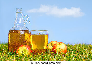 Flagon and pint of apple cider - An ice cold flagon of fresh...