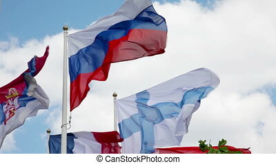 Flags of different countries flapping in wind