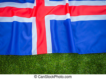 Flags of Iceland on green grass .