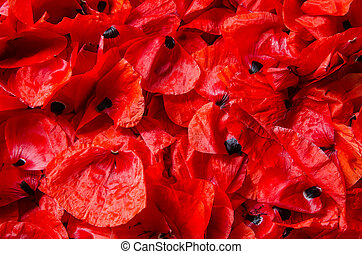 flakes of red poppies - background, texture