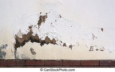 Flaking Paint on Exterior Wall Indicating Rising Damp