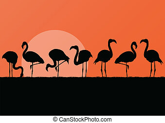 flamant rose, illustration, coucher soleil, fond, silhuettes, paysage