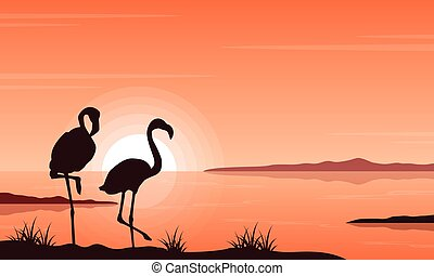 flamant rose, silhouette, lac, paysage