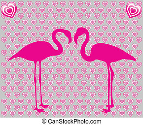 flamants rose, amour