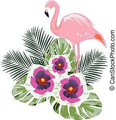 flamants rose, fleurs