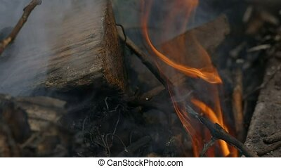 flame burning twig slow motion video - in a flame of fire...