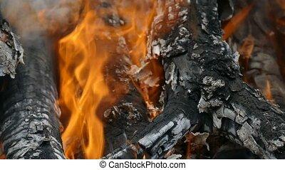 flame fire burns firewood slow motion video - orange flame...