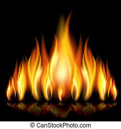 flame., fond
