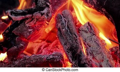 Flame in campfire