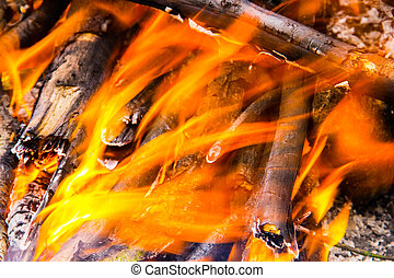 Flame of bonfire. Burning firewood in the fireplace closeup