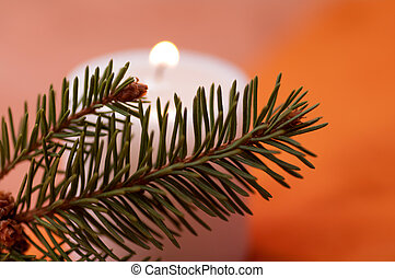 flame of the candle and fir branch on a red background