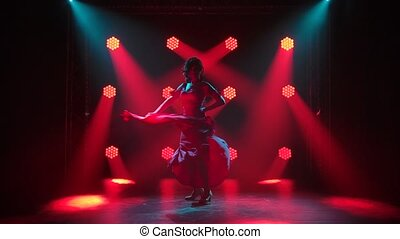 Flamenco. A passionate woman dances a fiery Spanish dance in...
