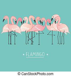 flamenco rosa, ilustración