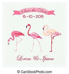 flamenco, -, vector, boda, fecha, excepto, aves, tarjeta