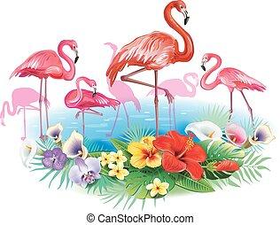 flamencos, y, arreglo, de, flores tropicales