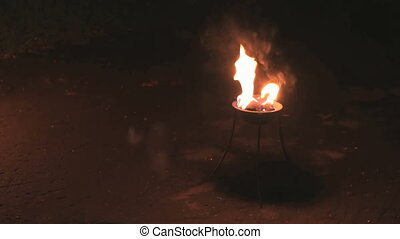 Flames in a fire bowl at night outdoors