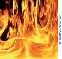 Flames of fire, close-up. Vector art illustration