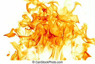 Dancing flames against a white background.