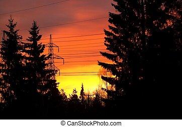 Flaming Morning Sky
