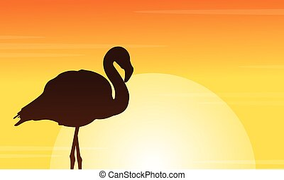 Flamingo at sunset scene silhouettes