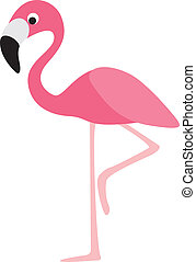 flamingo modern colour cartoon character on white background