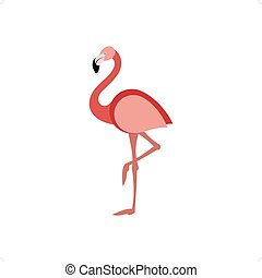Flamingo - Beautiful pink flamingo standing on one leg...