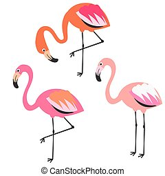 Flamingo flat style vector illustration.