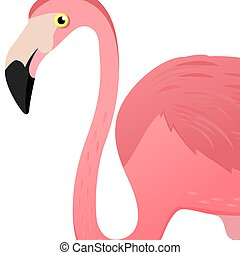 Flamingo head. Vector illustration. Poster with flamingo logo. Cute tropic exotic bird. Isolated on white background.