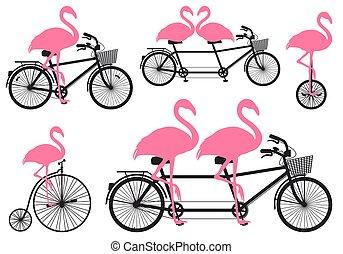 flamingo on bicycle, vector set - pink flamingos on vintage ...