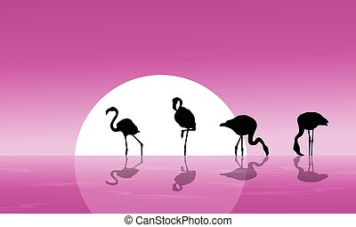 Flamingo on lake scenery silhouettes