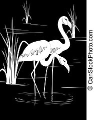 The white image of a flamingo standing on lake near to canes is black
