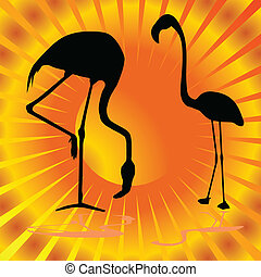 flamingo on orange background vector illustration