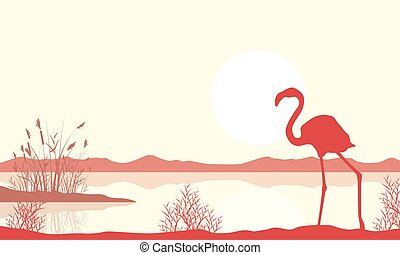 flamingo, silhouette, see, landschaftsbild