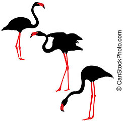 Flamingo Silhouettes - Flamingo black and red vector...