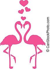 flamingos, amor, dois