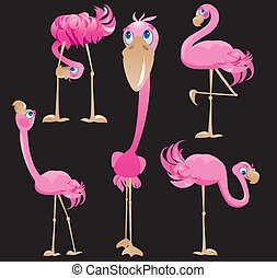 flamingos, karikaturen